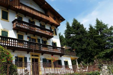 villa for 12 near Cortina d'Ampezzo - Venas di Cadore, near Cortina d'Ampezzo
