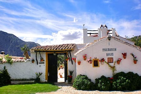 Andalusian house in the countryside - Alfarnatejo - Dom