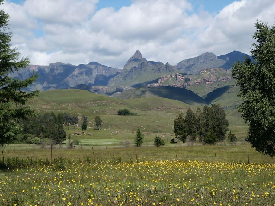 Garden view of Rhino Peak