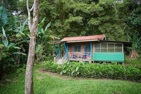 Cabina in Jungle 10 min from beach!