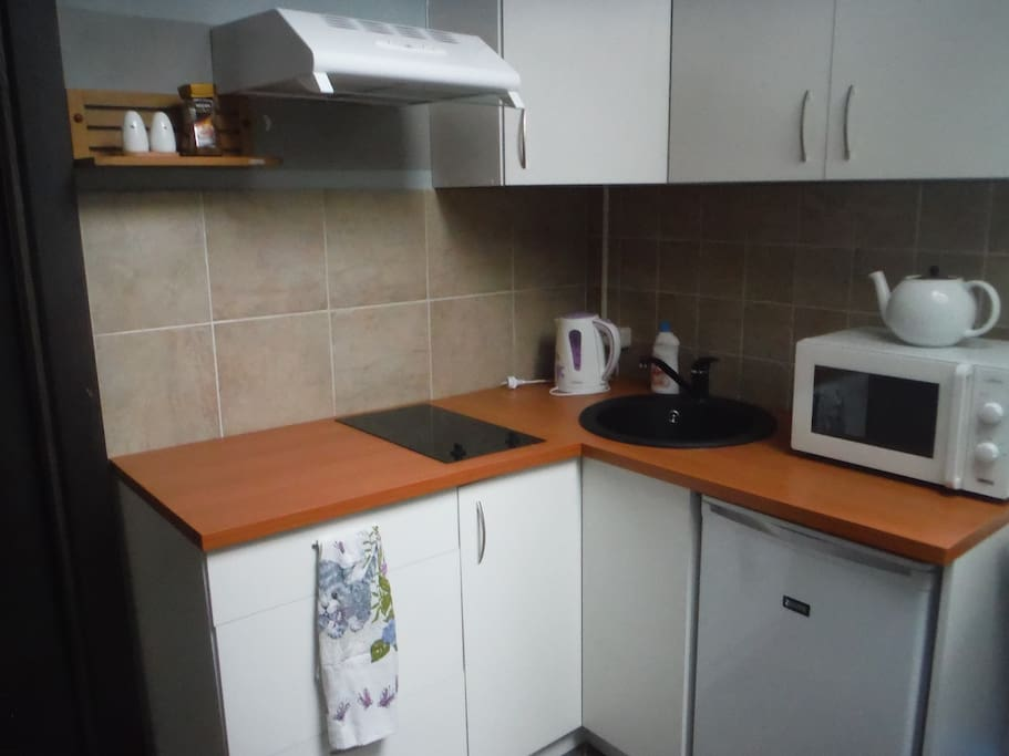 There is small kitchen corner with fridge, stove, microwave oven and kitchen cabinets