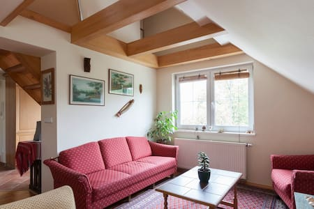 VILLA-2 to 8 PERSONS IN 3 BEDROOMS - Praga - Villa