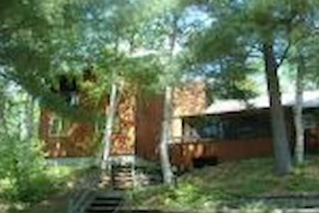 Lakefront Cottage Near Algonquin! - Maynooth - Cabin