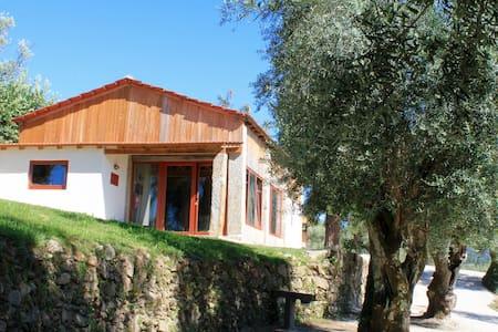 Casa dos Tonéis (T2+1) - QdR - Cabeceiras de Basto - Huis