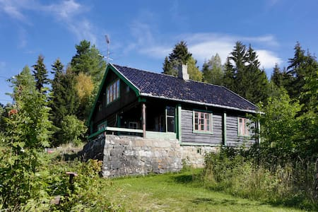 Peaceful cottage only 1 h from Oslo - Cabana