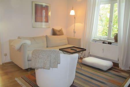 Charming Appartement - München - Apartment
