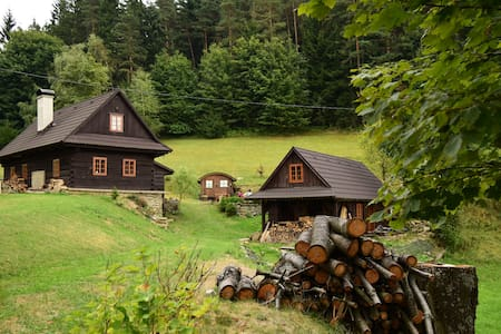 A cottage in quiet, secluded woods - Chalet
