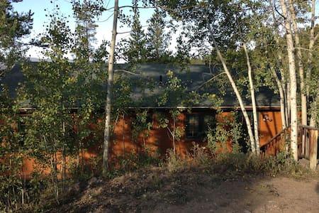 374 Bear Paw Drive - Granby - House