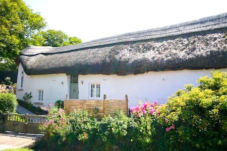 Thatched Devon Barn by the Sea - Croyde - Casa