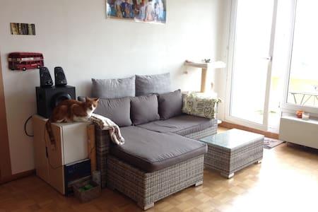 Grand studio - Lägenhet