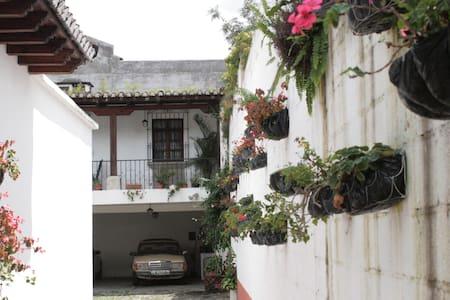 CASA LOS ROSALES - Ház