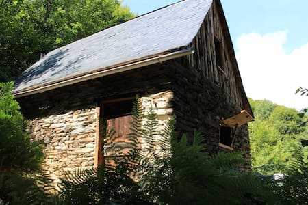 Mountain cabin French Pyrenees - Chatka