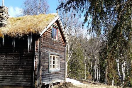Little Mountain cabin - Blockhütte