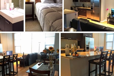 Beautiful Apt in Heart of Chicago