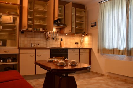 CLASSIC/STANDARD home-stay APARTMENT in VIENNA - Vienne - Appartement