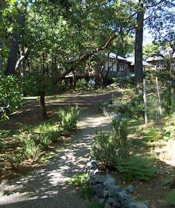 Sunny Inverness Cottage - Cabane