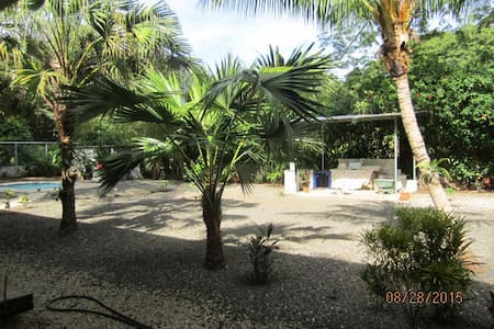 We are in the Guanacaste region is located in northwestern Costa Rica. Specifically in Playa Potrero is 50 minutes from the Liberia Airfield and largest 5 minutes walk to the Pacific. Staying with us is to find some at home but in a paradise of smell
