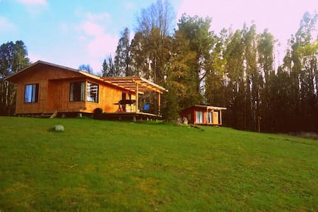 New cabin with lake view - House