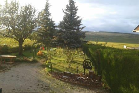 maison&jardin sur la rte des vins - Dům