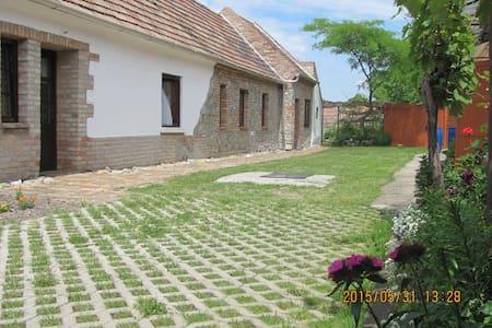 Tata, Kékkő Guesthouse - Hus