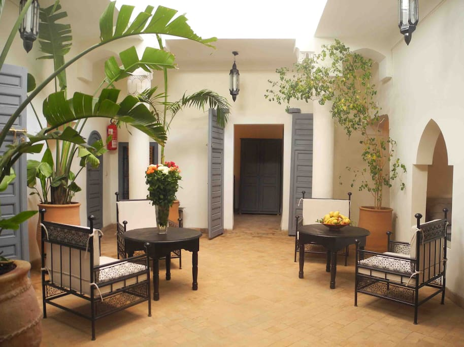 Our lovely plant filled courtyard.