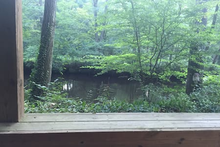 Swim, fish or kayak from the dock - Southampton Township - Ház
