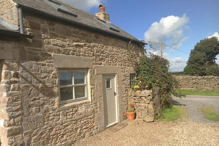 Cosy 4 star one bed 1700's cottage.