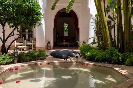 Traditional Riad with real garden - Marrakech - Bed & Breakfast