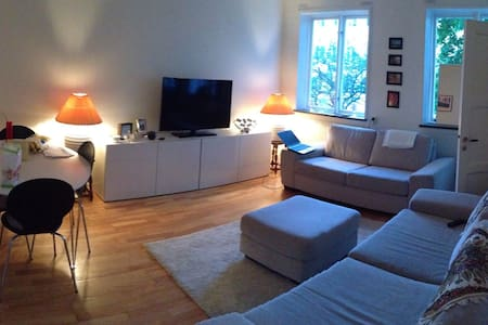 Charming 2 rooms appartment