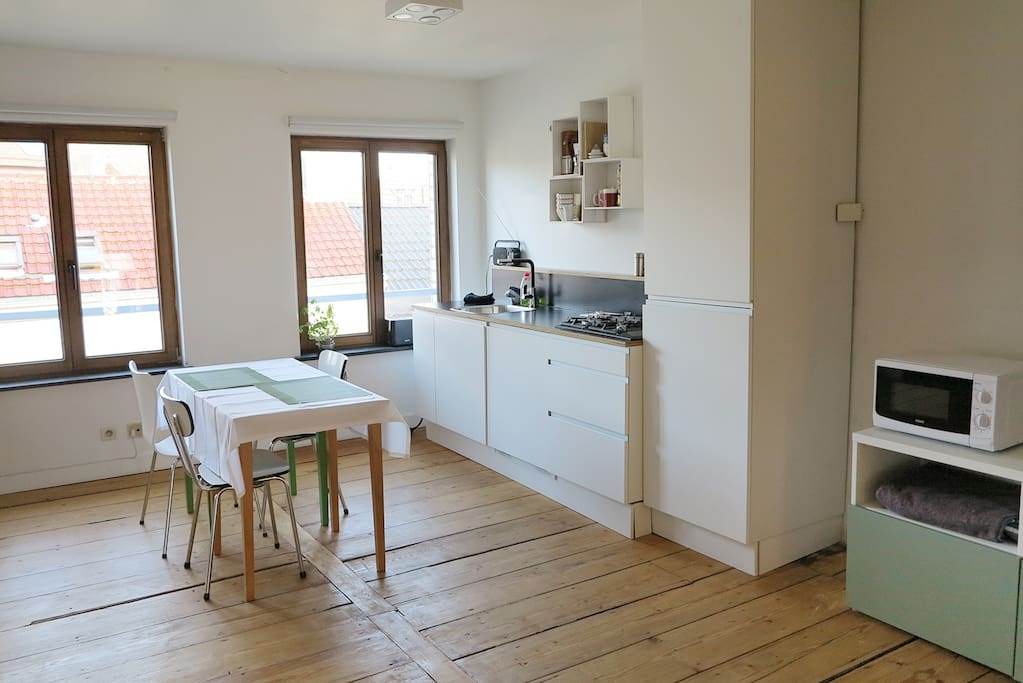 Lovely renovated appart + terrace
