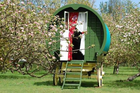 Bouncers Farm Campsite - Witham
