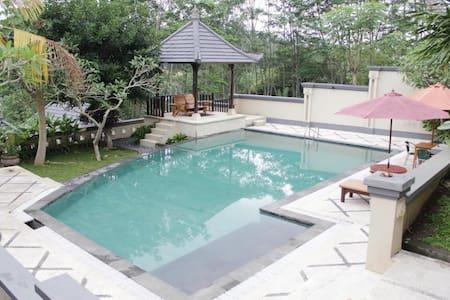 One Bedroom Villa - Mengwi - Villa