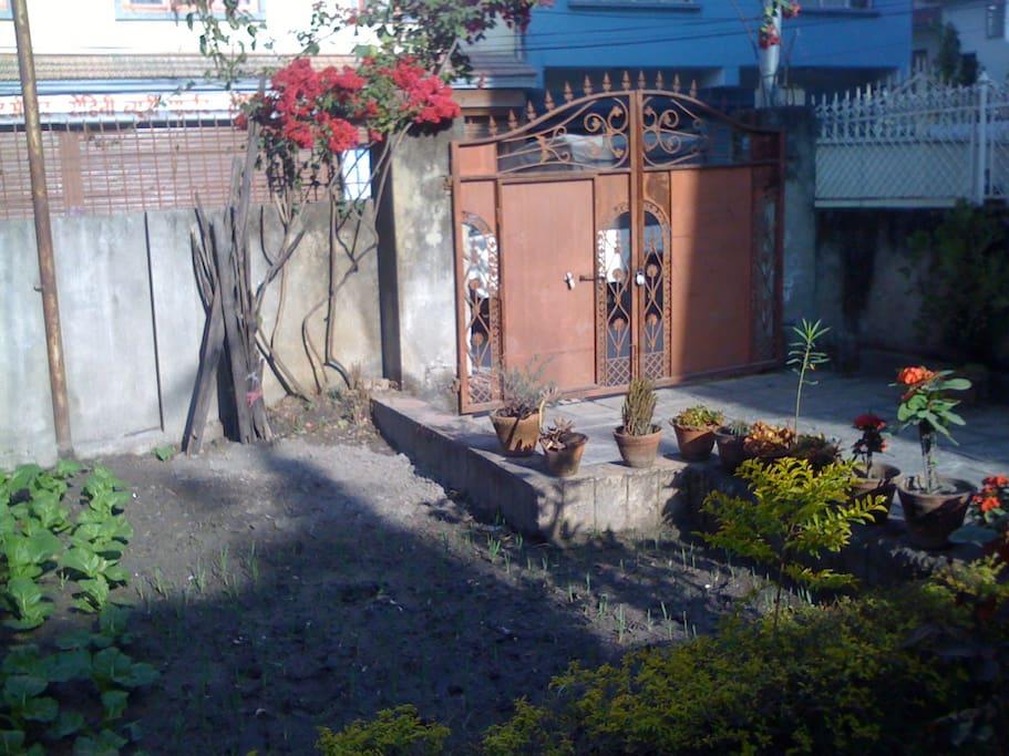 food garden and entrance