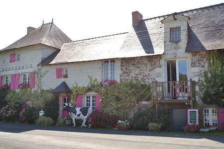 Logis au Fil de l'Eau (face Loire) - Appartement