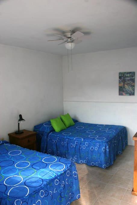 Habitacion con 1 cama Matrimonial y 1 Individual C/baño privado