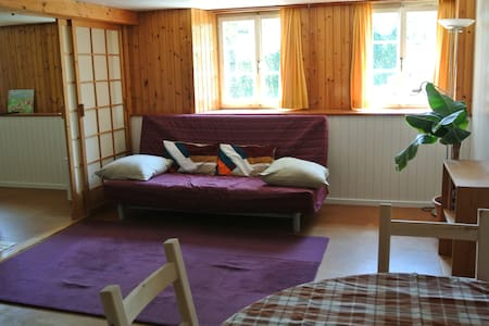 Swiss holiday flat with fireplace - Leilighet