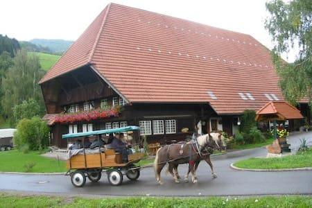 Doppelzimmer im Rommelehof - Gutach (Schwarzwaldbahn)