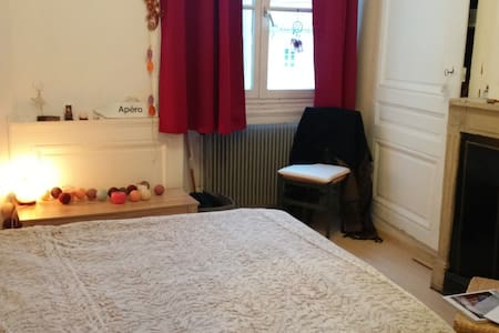 Quiet and cosy Bedroom in Lyon's center - Lyon - Appartement