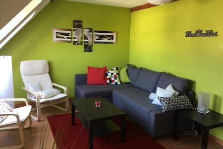 Attic apartment city center Haguenau - Appartamento