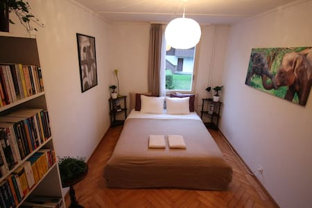 Perfectly located quiet room in Interlaken - Maison