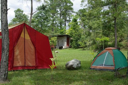 Camping grounds Taragonia - El Zamorano
