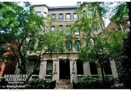 1 BR Perfect Lincoln Park Location - Chicago - Condominium