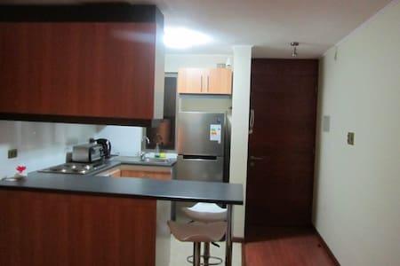 Departamento amoblado con balcón - Rancagua - Wohnung