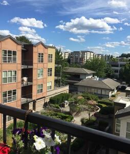 Redmond downtown apartment