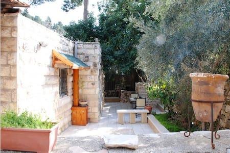 The hidden path in Ein Karem - Jeruzsálem - Lakás