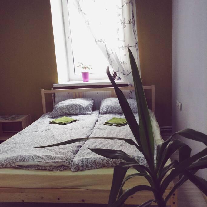 Комната с двуспальной и двухъярусной кроватями