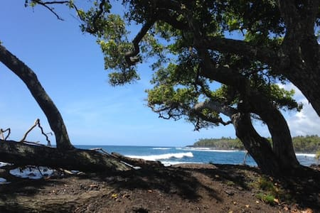 The Dolphin House - a secluded cabin buried in the jungle 5 miles from the tiny Village of Pahoa - comfortable bed, full kitchen, warm shower, amazing hosts. Full gym on property, expert guidance for adventures and sites available. Ahh...Wow...