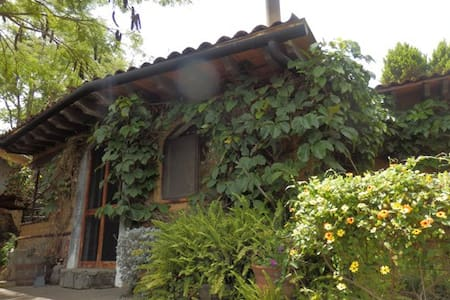 Nestled in magical Tepoztlan, Avalon is a tranquil oasis of enchanting beauty: lush gardens, walking paths, lotus ponds, yoga hall and a stunning view of the mystical Tepozteco mountain. Samadhi House is one of two cottages available in the property.