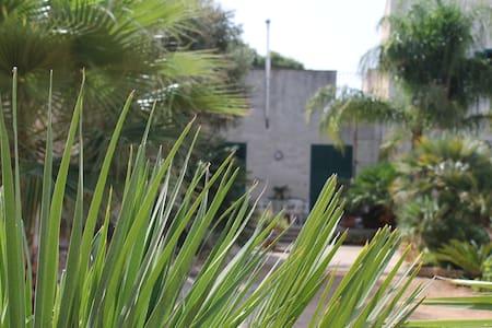 """Casa Vacanza """"il Melograno"""" - House"""