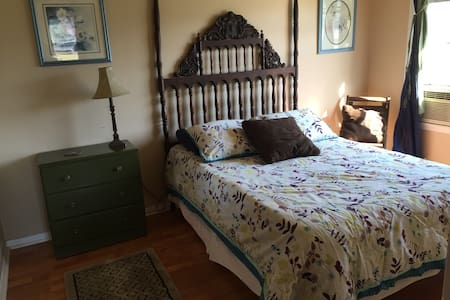 Bright, Cozy Blue Room - Rockdale - Hus